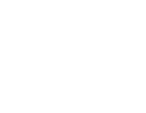 Trybus Group Logo